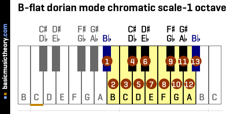 B-flat dorian mode chromatic scale-1 octave