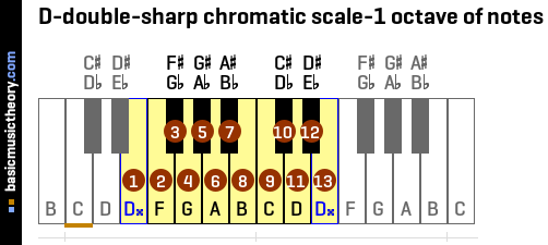 D-double-sharp chromatic scale-1 octave of notes