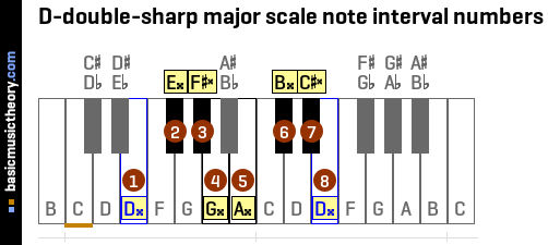 D-double-sharp major scale note interval numbers
